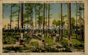 Turpentine Industry in the South Misc NC 1945