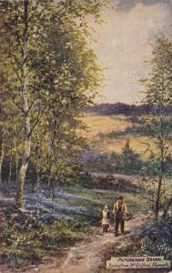 TUCK #7749, Springtime, Radford, Plymouth, Devon, England, UK, 1900-1910s
