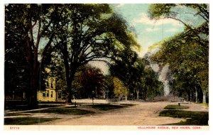 Connecticut New Haven ,  Hillhouse Avenue