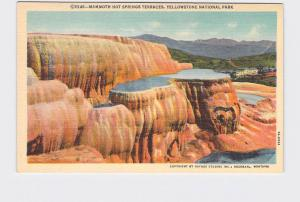 VINTAGE POSTCARD NATIONAL STATE PARK YELLOWSTONE MAMMOTH HOT SPRINGS TERRACES #7