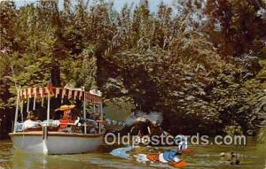 Jungle River Cruise Disneyland, Anaheim, CA, USA Postcard Post Card Disneylan...