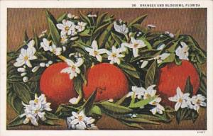 Florida Oranges and Blossoms Curteich