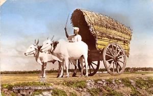 Colombo Ceylon, Ceylan Bullock Cart Colombo Bullock Cart