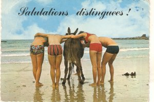 Bathers and donkey. Salutations distinguees!  Modern French PC. Continental si