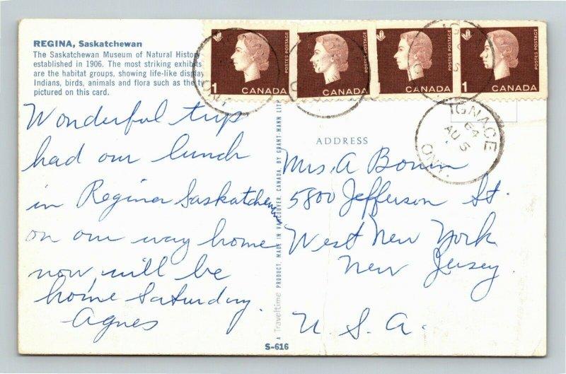 Regina Saskatchewan-Canada, Museum of Natural History, Chrome Postcard
