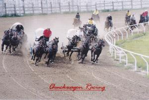 CANADA, 50-70s; Canadian Professional Chuckwagon racing