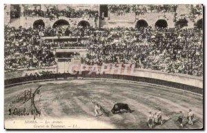Old Postcard Nimes Les Arenes Racing Bulls Bullfight