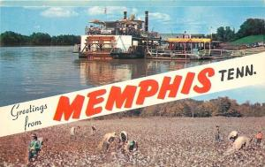 Memphis Tennessee~Memphis Queen II~Cotton Picking~1950s Banner Greetings