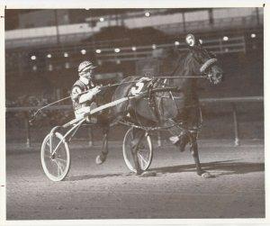 SPORTSMAN'S PARK Harness Horse Race , MI T MODEL winner, 1980, 2nd Race