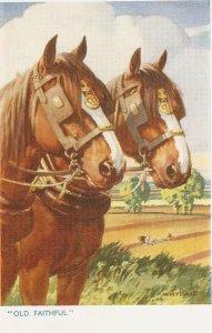 Whyadla. Shire Horses. Old Faithful  Nice vintage Salmon Postcard