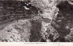 New York Watkins Glen Still Water Gorge