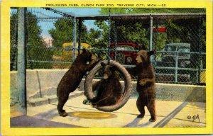 VTG Postcard Bear Cubs Clinch Park Zoo Traverse City Michigan Unposted 78