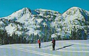 Utah Brighton Mount Wolverine