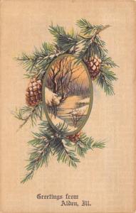 Alden Illinois~Pine Cones 'Round Winter Creek~1905 Postcard