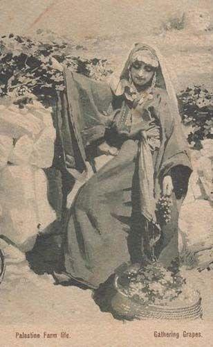 Palestine India Indian Farm Farming Lady Life Antique History Postcard
