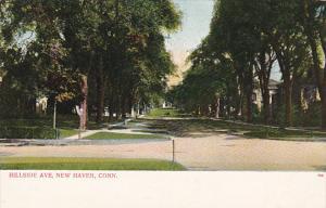 Hillside Ave, New Haven, Connecticut, Pre 1907