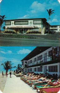 Tropicana Motel, Ocean Front Patio, MIAMI BEACH, Florida, 40-60´