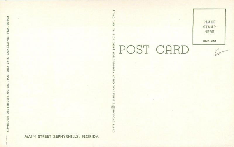 Zephyrhills Florida~Main Street~Citizens Bank ~Elsie's 5&10~VW Beetle~1973 PC