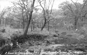 Guthrie Center Iowa~Spring Brook State Park~Muddy Creek~Picnic Tables~1950s RPPC