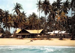 Malaysia Marang Palm Trees Beach Plage