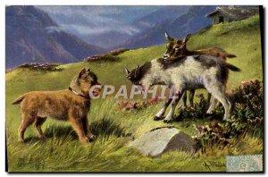 Old Postcard Goat Chevre Dog