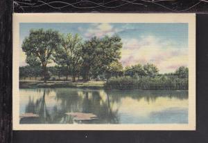 River Scene Postcard BIN