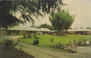 Exterior View, Driveway to Camellia Motel, Florence, South Carolina, PU-1965
