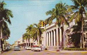 Tropical Royal Palms In Front Of Open Air Post Office On First Street Fort My...