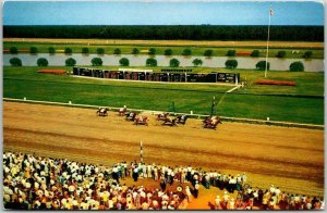 Vintage ATLANTIC CITY RACE COURSE New Jersey Postcard Horse Racing / 1956 Cancel