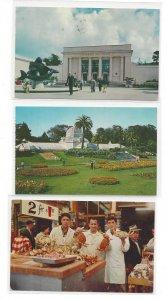 CA San Francisco Conservatory Fishermans Wharf Aquarium 3 Diff Vintage Postcards