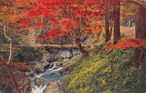 11152   Osaka  Minomo Park    Bridge over stream with foliage