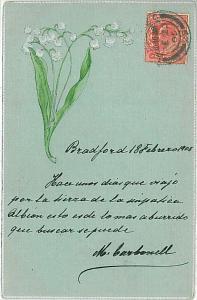 VINTAGE POSTCARD: FLOWERS 1905