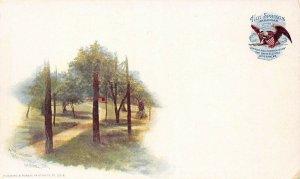 LP26   Hot Springs Arkansas Dark Hotel Grounds PMC Postcard