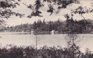 New York Adirondack Mountain Shore Syracuse Star Lake Albertype