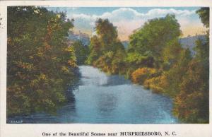 One of the beautiful scenes near Murfreesboro,  North Carolina,   PU_1931