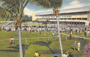 Miami & Hollywood, FL, USA Gulfstream Park Race Track Horse Racing Postcard u...