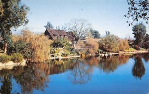 Toluca Lake California~House on the Lake~Terraced Landscaping~1950s Postcard