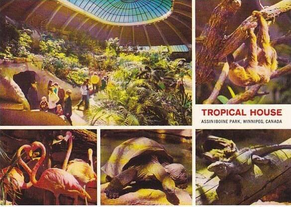 Canada Winnipeg Assiniboine Park Zoo