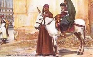 Egyptian Arab Family On Donkey Early Egypt Postcard
