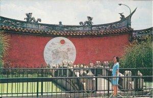 TAIWAN, Taipei, China, Temple of Confucius, Pretty Woman, 1970's Chrome ...
