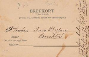 Bastad , Gatuparti , Sweden , 1901-07