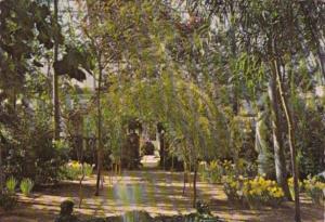 New Jersey Somerville The Italian Garden In Duke Gardens