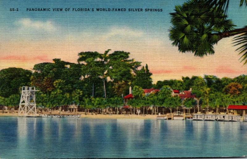 Florida Silver Springs Panoramic View