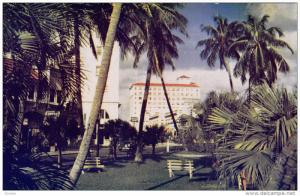Popular Vacation and Residential Area, Palm Trees, West Palm Beach, Florida, ...