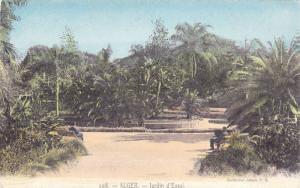 Jardin d'Essai, Alger, Algeria, Africa, 1900-1910s