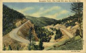 Horseshoe Curve Anaconda MT Unused
