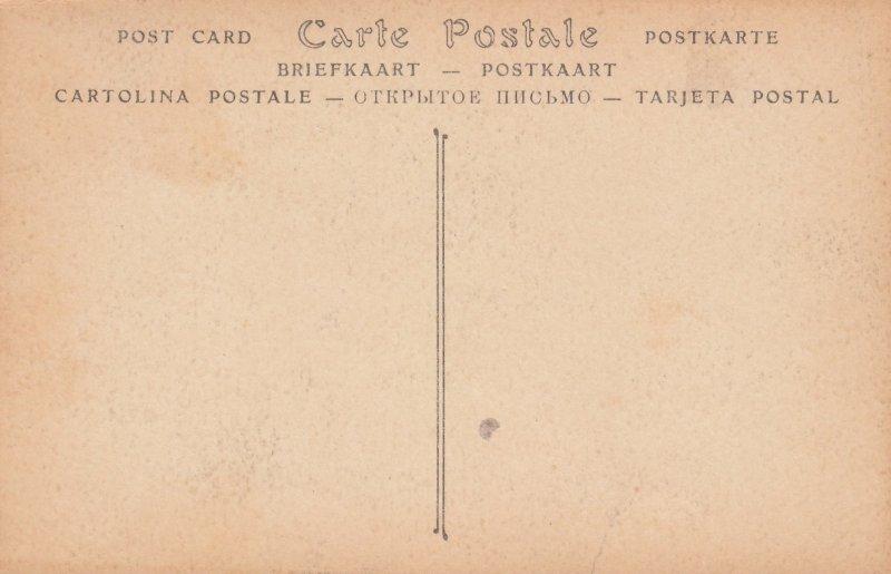FONTEVRAULT , France , 00-10s ; La Tour d'Evrault (cate sud)