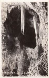 RP: CARLSBAD Caverns (cave) , New Mexico , 1930-40s ; Celery Formation