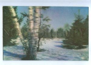 214466 RUSSIA Winter landscape photo Vlasenko old 3-D postcard