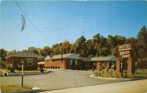 Parsippany New Jersey~White Deer Motel~Deer in Front Yard~1957 Postcard